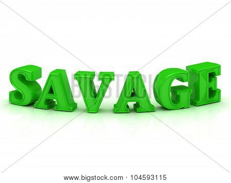 Savage - Inscription Of Green Bend Letters