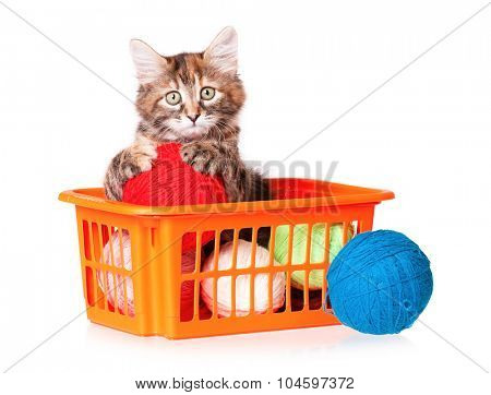 Cute kitten with clews of thread, isolated on white background