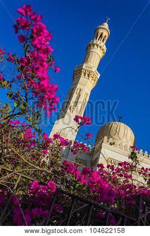 El Mina Masjid Mosque In Hurghada,
