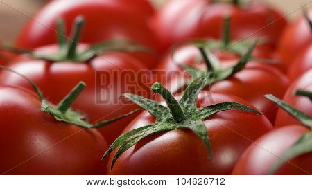red tomatoes background. top view. Header for website