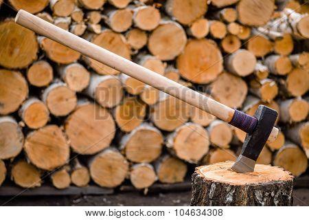 Massive axe stuck in a birch stub