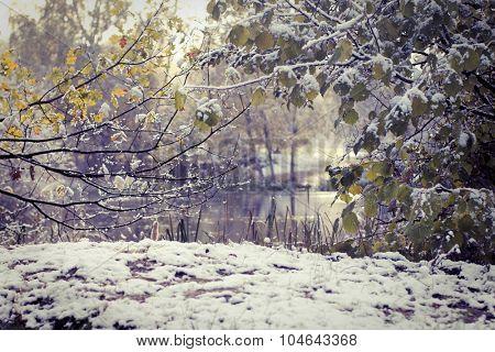 Fisrt snow in park. Calm autumn scene. Pond in park