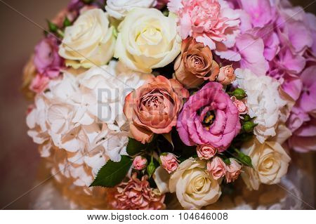 Beautiful Multicolored Different Flowers Close-up
