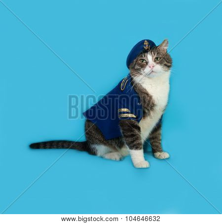 Old Striped And White Cat In Naval Uniform With Cap Sitting On Blue Background