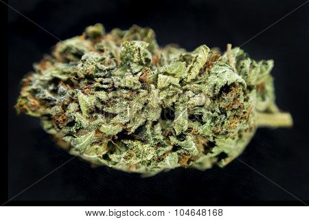 Macro detail of a cannabis bud