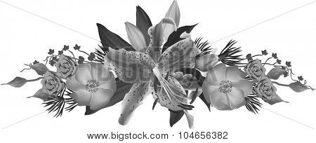 illustration with lily flowers isolated on white background