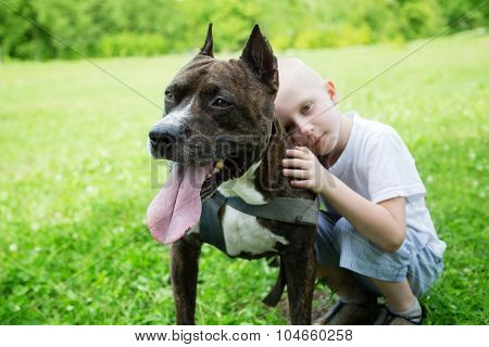 Boy with American Staffordshire Terrier in the Park