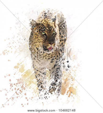 Digital Painting of Leopard on White Background