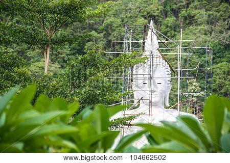 Image Big Buddha