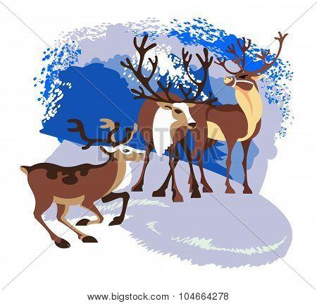 Three Wild Reindeer