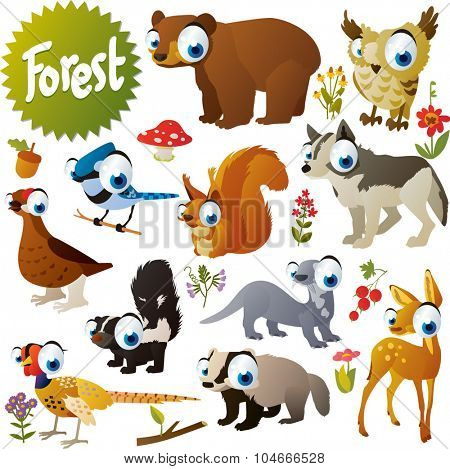 cute woodland forest animals and birds for children apps or books: bear, owl, squirrel, jay, wolf, otter, deer, badger, skunk, pheasant, grouse