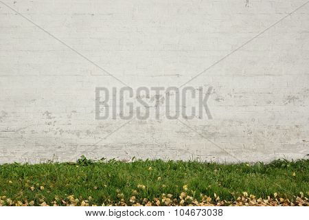 Old White Brick Painted Wall Abd Green Grass Background