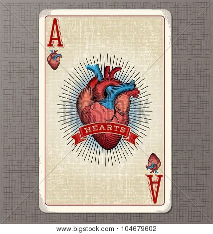 Vintage playing card. Ace of Hearts with anatomical heart illustration and ribbon banner