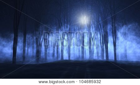 3D landscape of a foggy spooky forest - ideal for Halloween