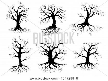 Old tree icons silhouettes with roots
