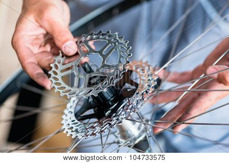 Mechanic repairing gears of bicycle