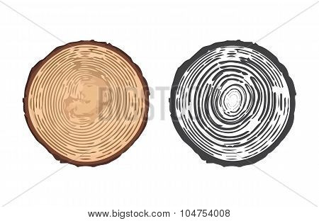 Vector Illustration Of Tree Rings.