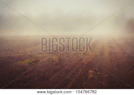 Freshly plowed field in the fog in rural Prince Edward Island, Canada.