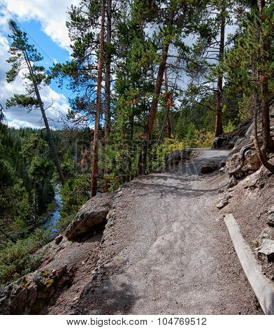 A pathway up to the canyon in Yellowstone NP