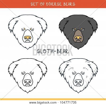Sloth bear. Set isolated face, heads bear in lines