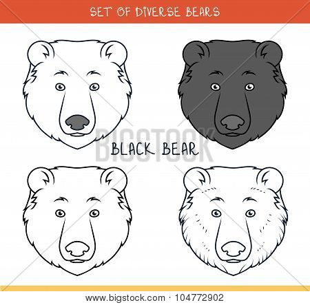 Black bear. Set isolated face, heads bear in color, lines