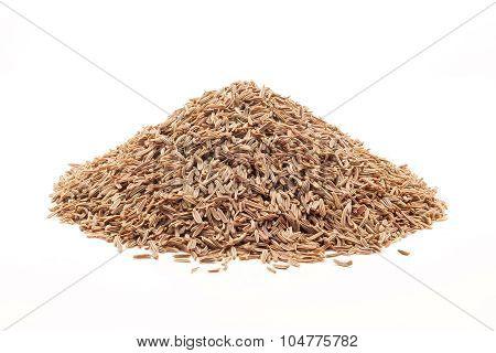 Pile of Organic Caraway.