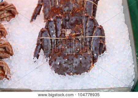 Fresh King Crab On Ice.