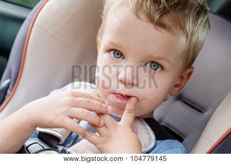 Toddler Cute Kid Sucks A Finger