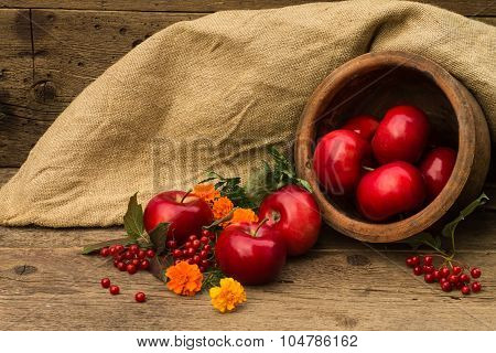 Red Apple In A Clay Pot On A Background Of Burlap