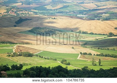 Near surroundings - landscape picturesque Tuscan town of Montalcino