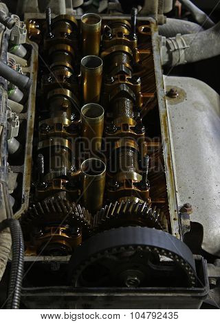 The internals of the engine under the valve cover