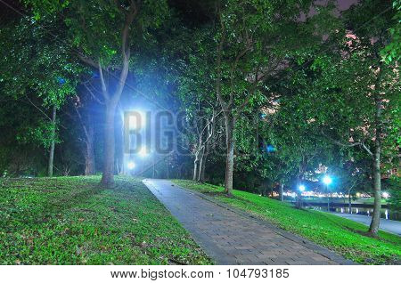 Small ascending path in Punggol Park