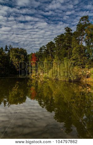 Water Reflection Of Trees And Sky - Czech Republic