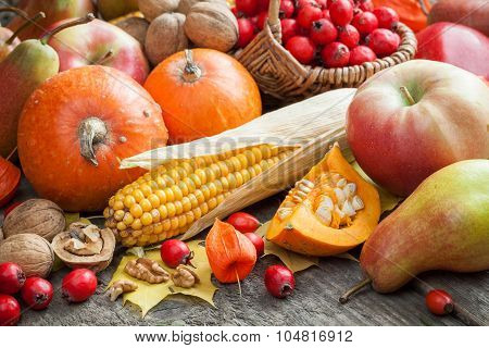 Autum Fruit And Vegetables.