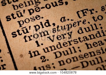 Close-up Of An Opened Dictionary Showing The Word Stupid