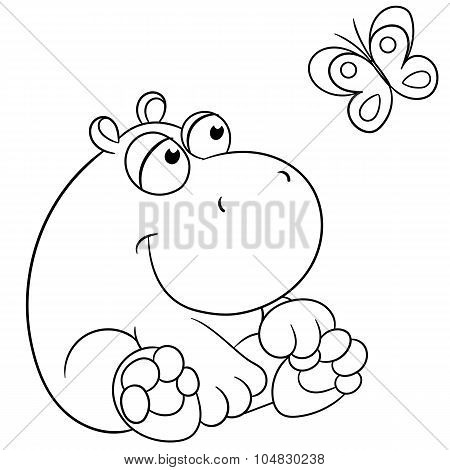 Hippopotamus And Butterfly