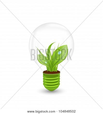 Lamp with Green Grass Inside