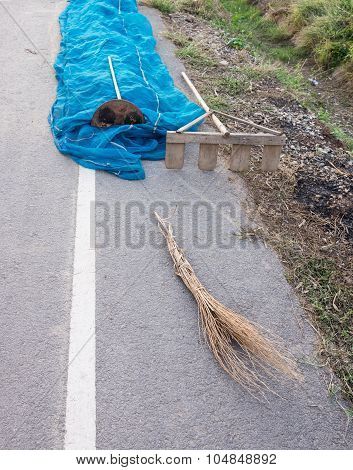 Wooden Rake And Stick Broom