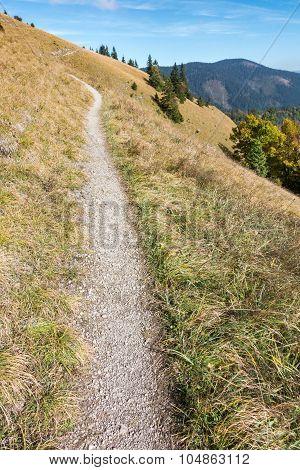 Way Through The Hillside