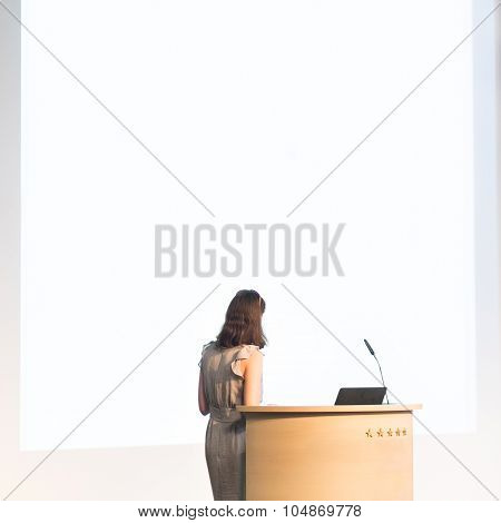 Business woman making business presentation.