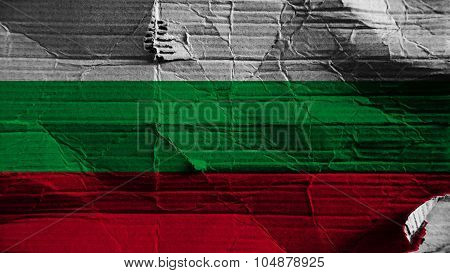 Flag of Bulgaria, Bulgarian flag painted on paper texture