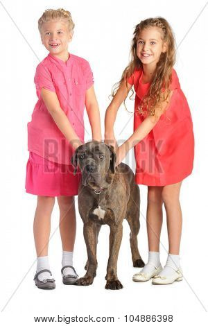 Two girls holding a big dog by the collar isolated on white. Focus on the dog