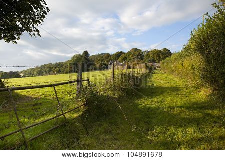 Pretty Somerset Farmland View