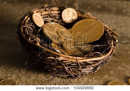 American Us Eagle Gold Coin Nest Egg
