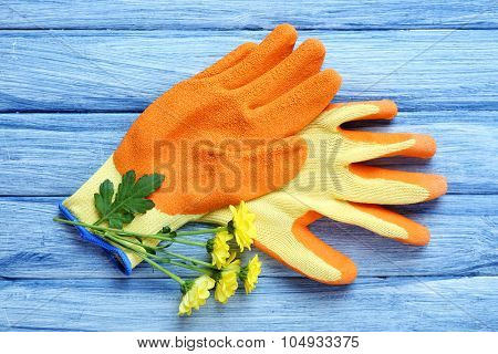 Beautiful composition of flower and garden gloves on blue wooden background