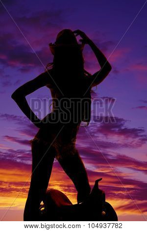 Silhouette Cowgirl Stand By Saddle