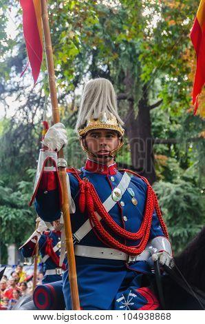 Royal Guard Horse
