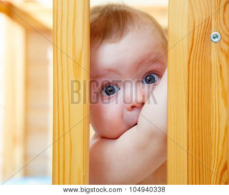 Little Cute Boy Looking Through The Side Baby Cot