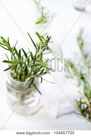 Fresh rosemary bound, sprigs in a glass
