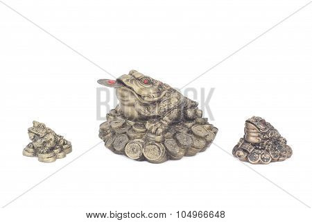 Figures of Chinese toads